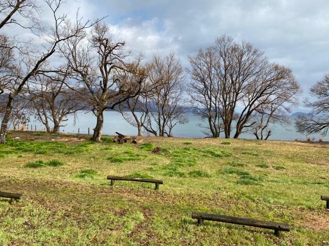 【琵琶湖西エリア】『貫川内湖・桂浜園地』の釣り場ガイド(駐車場・釣れる魚)