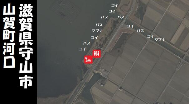 【琵琶湖南エリア】『守山市 赤野井・山賀町河口』の釣り場ガイド(駐車場・釣れる魚)