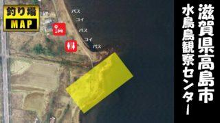 【琵琶湖西 高島市】『水鳥鳥観察センター』の釣り場ガイド(駐車場・トイレ・釣れる魚)