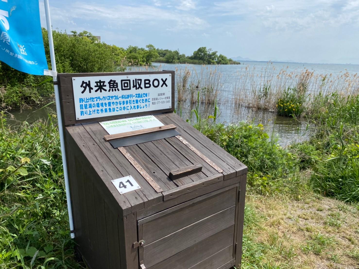 【琵琶湖東 大津市】『カネカ滋賀工場』周辺の釣り場ガイド(釣れる魚・駐車場・トイレ)