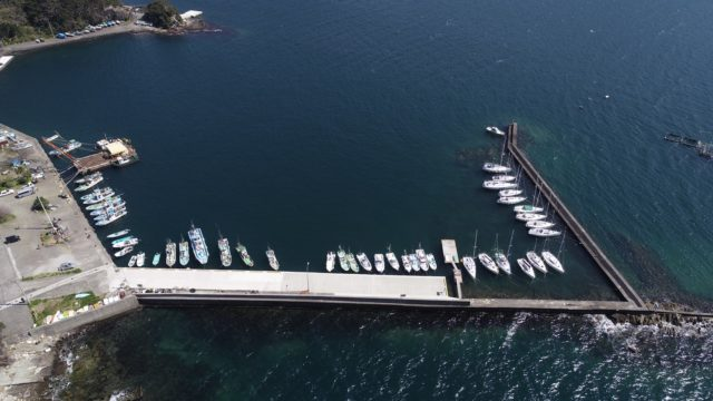 【沼津市】『多比港』の釣り場ガイド(釣れる魚・駐車場)