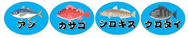 【沼津市】『江梨公民館付近』の釣り場ガイド(釣れる魚・駐車場)