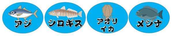 【河津町】『今井浜・ベロバ海岸』の釣り場ガイド(釣れる魚・駐車場・トイレ)
