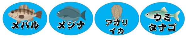 【東伊豆町】『稲取銀水荘』前の突堤の釣り場ガイド(釣れる魚・駐車場・トイレ)