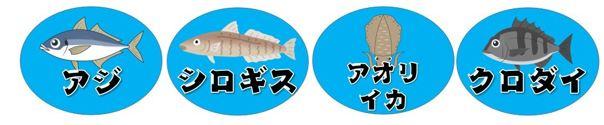【西伊豆町】『安良里港 あらりこう』の釣り場ガイド(釣れる魚・駐車場)