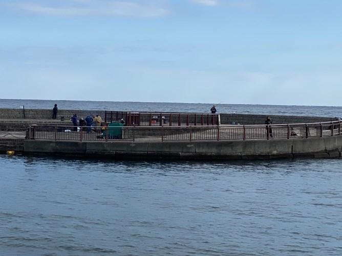 【伊東市】『川奈いるか浜』の釣り場ガイド(釣れる魚・駐車場・トイレ)