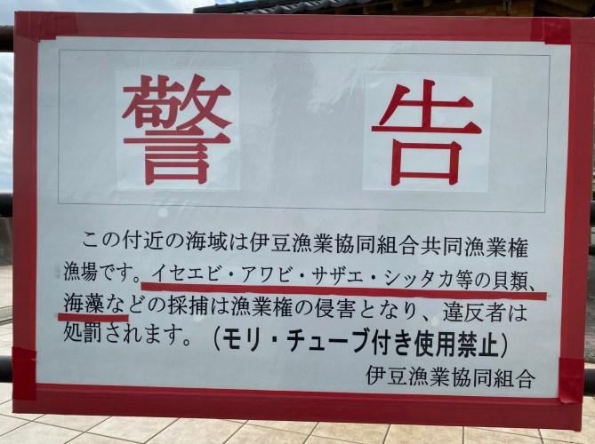 【東伊豆町】『片瀬館ひいな周辺』の釣り場ガイド(釣れる魚・駐車場・トイレ)