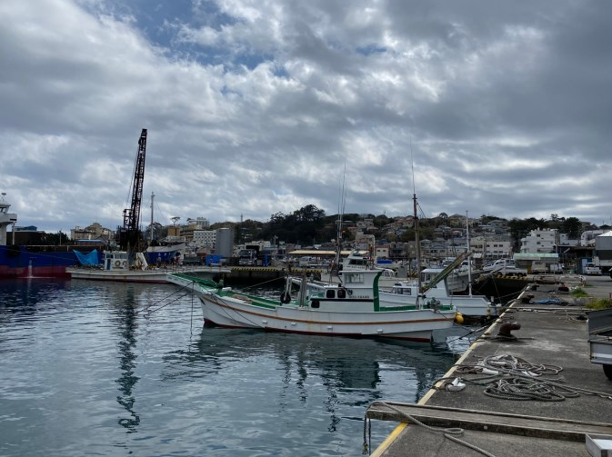 【東伊豆町】『稲取港|いなとりこう』の釣り場ガイド(釣れる魚・駐車場・トイレ)