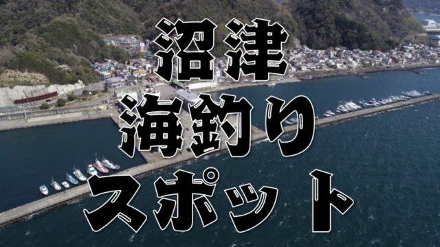 【永久保存版】『静岡県沼津市』のおすすめ海釣り14スポットまとめ