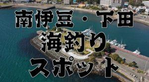 【永久保存版】『南伊豆町・下田市』のおすすめ海釣り23スポットまとめ