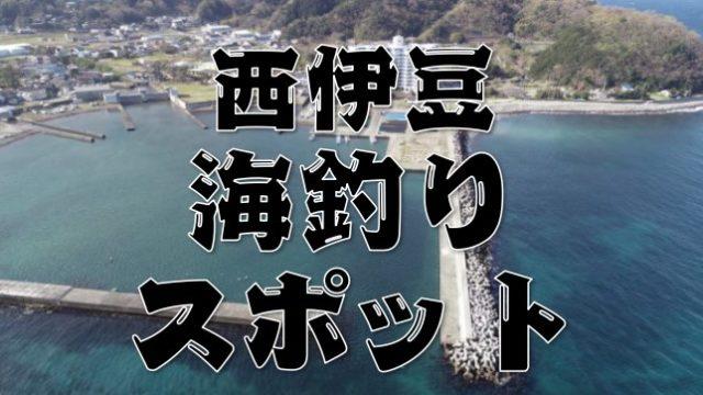 【永久保存版】『西伊豆町・伊豆市のエリア』のおすすめ海釣り15スポットまとめ