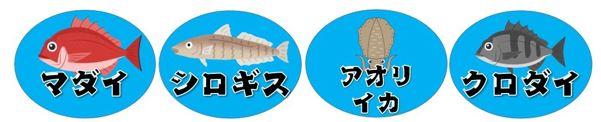 【西伊豆町】『田子漁港|たごぎょこう』の釣り場ガイド(釣れる魚・駐車場)