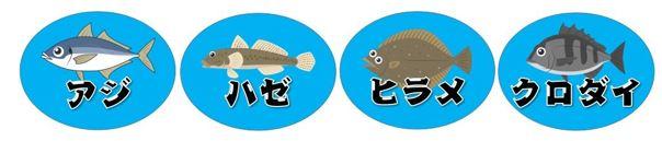 【南伊豆町】『弓ヶ浜海水浴場・青野川』周辺の釣り場ガイド(釣れる魚・駐車場)