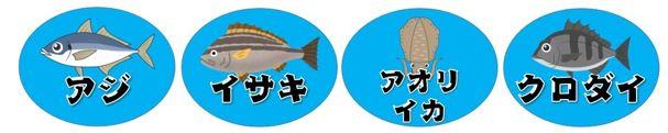 【南伊豆町】『妻良離岸堤』の釣り場ガイド(釣れる魚・駐車場)