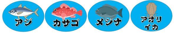 【伊東市】『宇佐美ダイビングセンター・金目鯛の宿 こころね』周辺の釣り場(釣れる魚・駐車場)
