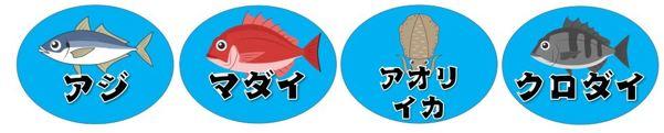 【沼津市】『木負堤防』の釣り場ガイド(釣れる魚・駐車場)