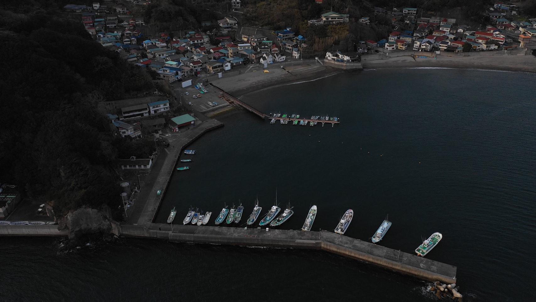 【南伊豆町】『子浦海水浴場付近』の釣り場ガイド(釣れる魚・駐車場)
