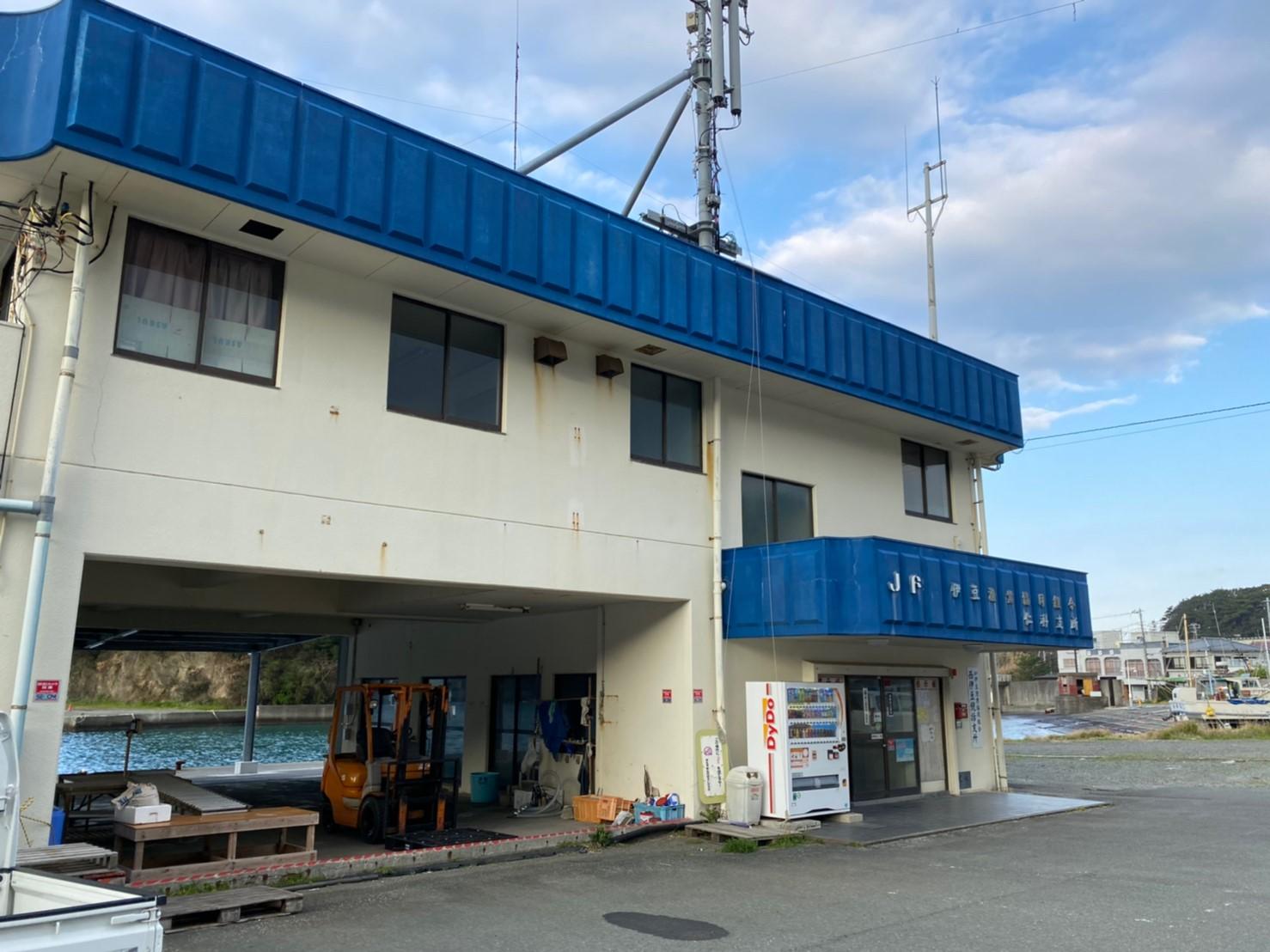 【西伊豆町】『仁科漁港付近 にしなぎょこう』の釣り場ガイド(釣れる魚・駐車場)