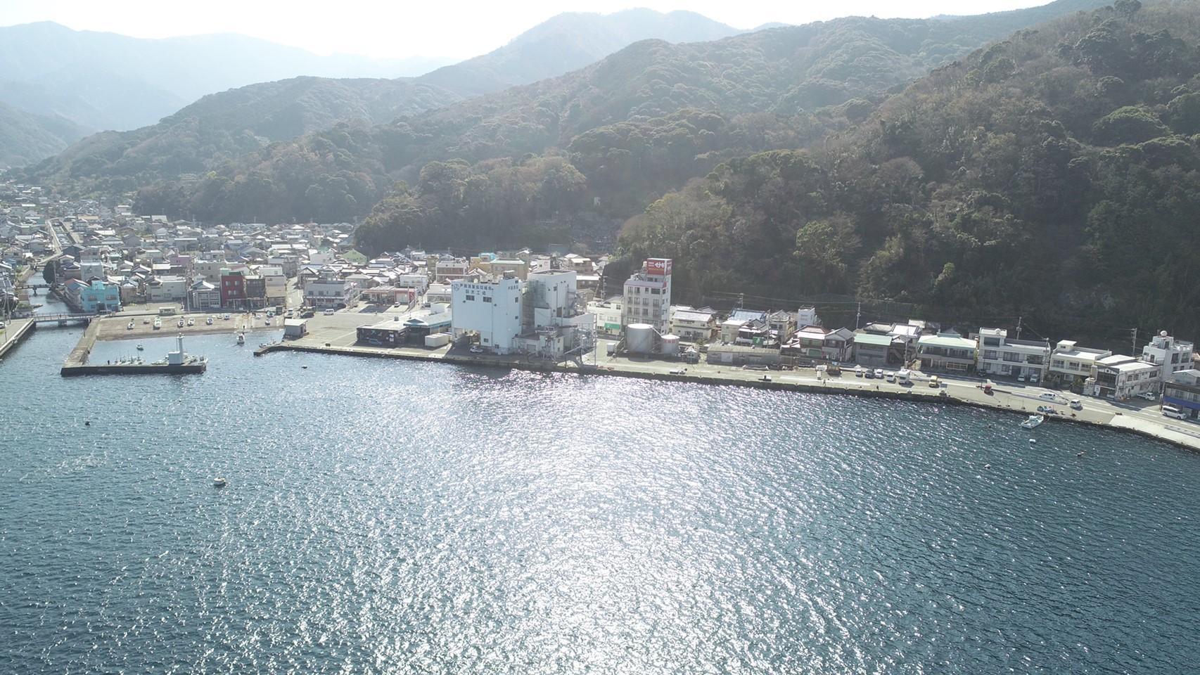 【西伊豆|沼津市】『戸田漁港周辺』の釣り場ガイド(釣れる魚・駐車場)