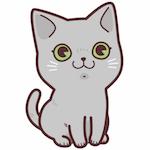 東海釣りWALKER.猫