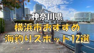 横浜市まとめ