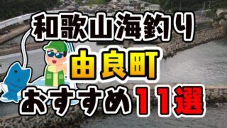 【完全保存版】和歌山県「由良町」のおすすめ海釣りスポット11選
