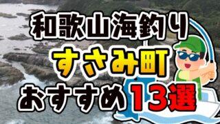 【保存版】和歌山県「すさみ町」おすすめ海釣りスポット13選(釣れる魚・アクセス)