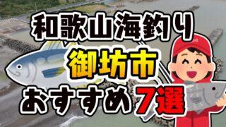 【保存版】和歌山県「御坊市」おすすめ海釣りスポット7選(釣れる魚・アクセス)
