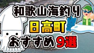 【保存版】和歌山県「日高町」おすすめ海釣りスポット9選(釣れる魚・アクセス)
