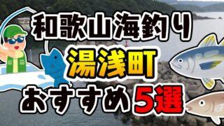 【永久保存版】和歌山県「湯浅町」おすすめ海釣りスポット5選