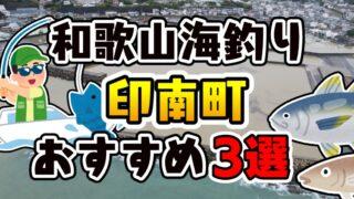 【まとめ】和歌山県「印南町」おすすめ海釣りスポット3選(釣れる魚・アクセス)