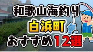 【保存版】和歌山県「白浜町」おすすめ海釣りスポット12選(釣れる魚・アクセス)