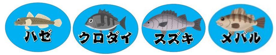 『真野港:まのこう』の釣り場情報(駐車場・釣れる魚)