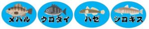 『平坂入江:へいさかいりえ』の釣り場情報(住所・駐車場・釣れる魚)