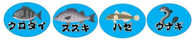 【夜釣りが狙い!家族連れに人気】『新宝緑地:しんぽうりょくち』の釣り場ガイド(駐車場・釣れる魚)