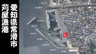 【ハゼ釣り一番!常滑市】『苅屋漁港:かりやぎょこう』の釣り場ガイド(駐車場・釣れる魚)