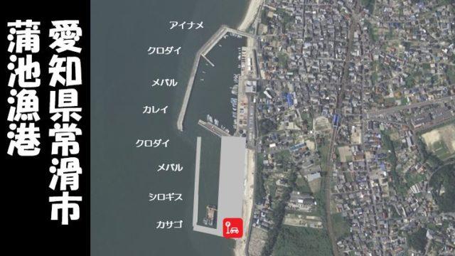 【根魚とクロダイ|常滑市】『蒲池漁港:かばいけぎょこう』の釣り場ガイド(駐車場・釣れる魚)