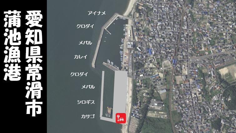 【根魚とクロダイ 常滑市】『蒲池漁港:かばいけぎょこう』の釣り場ガイド(駐車場・釣れる魚)