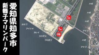 【ハゼやアナゴが人気 知多市】『新舞子マリンパーク』の釣り場ガイド(駐車場・釣れる魚)