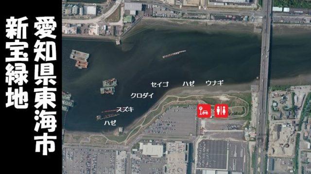 【夜釣りが狙い!家族連れに人気】『東海市新宝緑地』の釣り場ガイド(駐車場・釣れる魚)