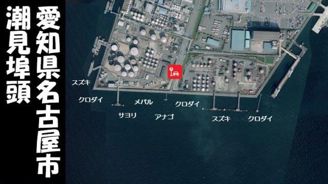 【名古屋の大人気スポット!】『潮見埠頭:しおみふとう』の釣り場ガイド(駐車場・釣れる魚)