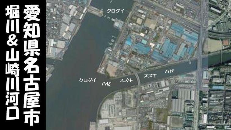 【名古屋|東築地小学校裏】『堀川&山崎川河口』の釣り場ガイド(駐車場・釣れる魚)