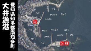 【豊富なターゲット|南知多町】『大井漁港:おおいぎょこう』の釣り場情報(住所・駐車場・釣れる魚)
