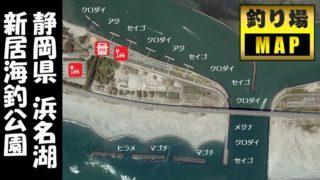 【浜名湖南部】『新居海釣公園』の釣り場ガイド(駐車場・釣れる魚・トイレ)