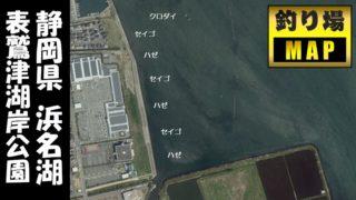 【浜名湖南西部】『表鷲津湖岸公園』の釣り場ガイド(駐車場・釣れる魚・トイレ)