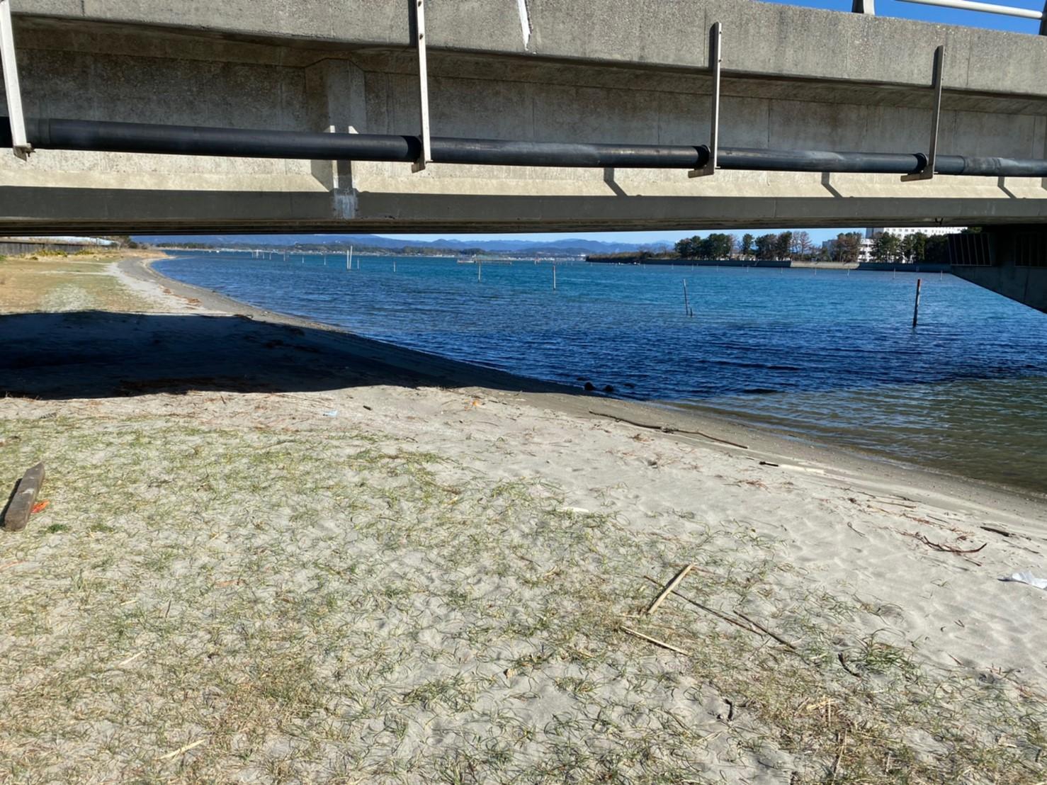 【浜名湖南部】『中之島大橋・浜名湖大橋』周辺の釣り場ガイド(釣れる魚・駐車場・コンビニ)