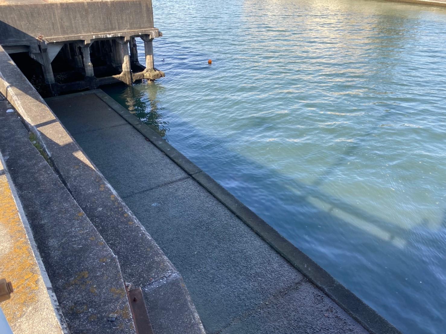 【夜釣りに大人気】『堀川&山崎川河口』の釣り場ガイド(駐車場・釣れる魚)
