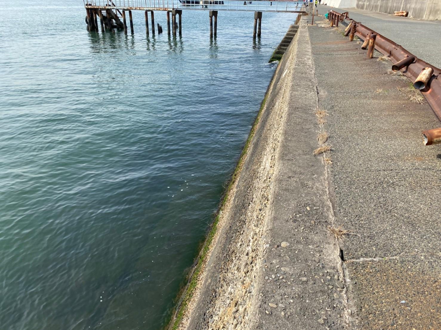 【大人気スポット!】『潮見埠頭:しおみふとう』の釣り場ガイド(駐車場・釣れる魚)