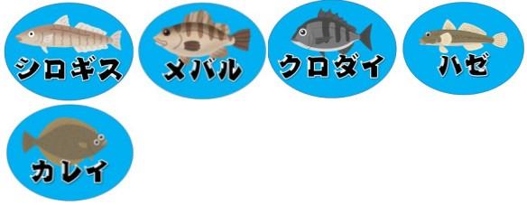 『河和漁港:こうわぎょこう』の釣り場情報(住所・駐車場・釣れる魚)