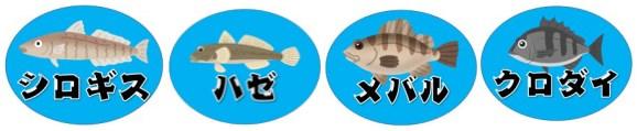 【ハゼ釣りのメッカ】『くじ港』の釣り場情報(住所・アクセス・釣れる魚)